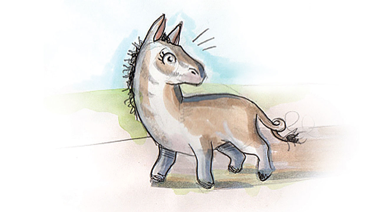 Header illustration of donkey for African Bedtime story Is There Anyone Like Me?