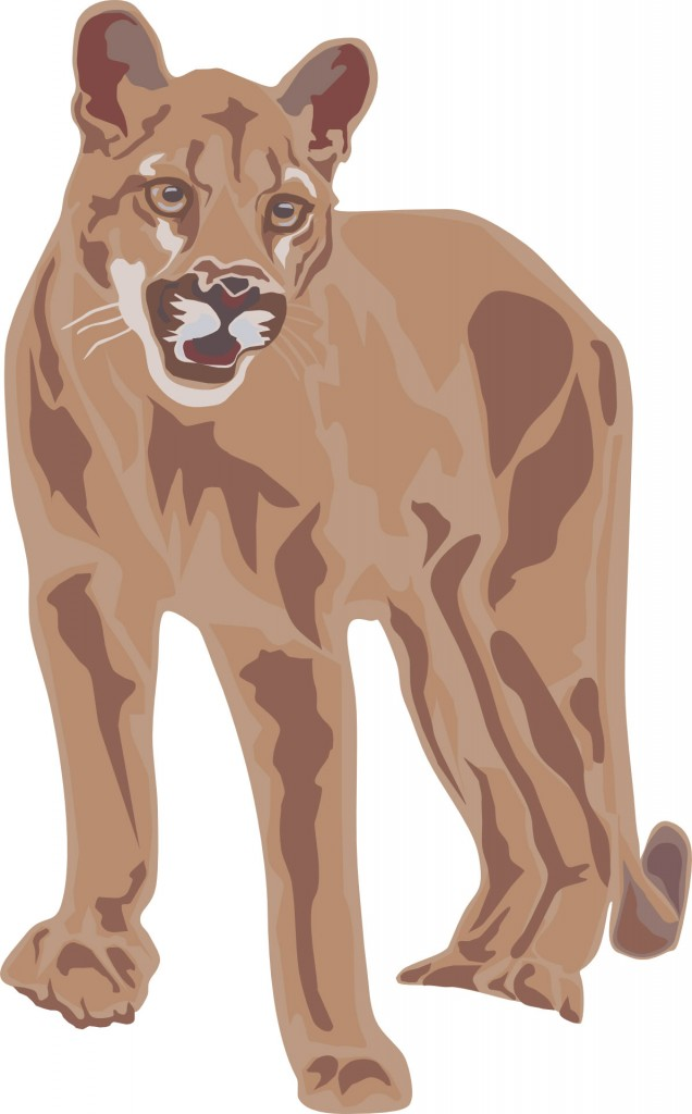 Illustration of puma for kids poem Rathers