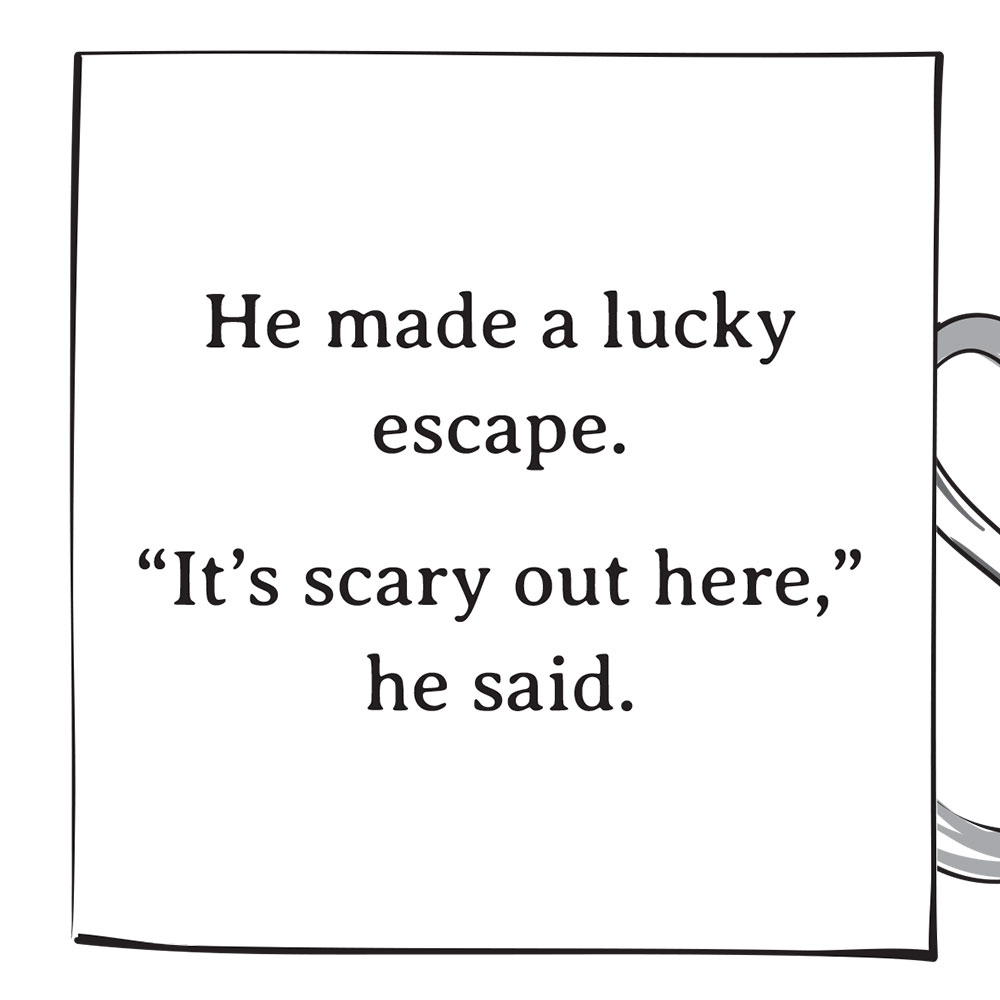 Whose Button Is This bedtime stories illustration p8