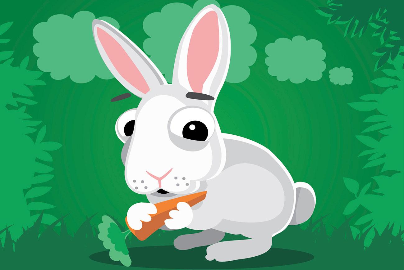 Illustration for Korean fairy tale Rabbit's Eyes