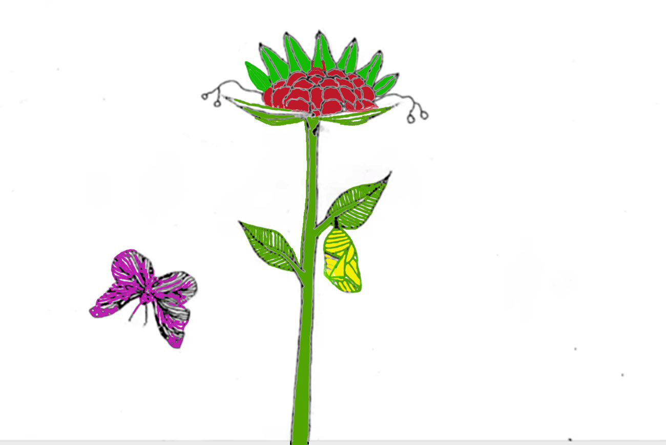 Illustration for children's Motion Poem The Seed
