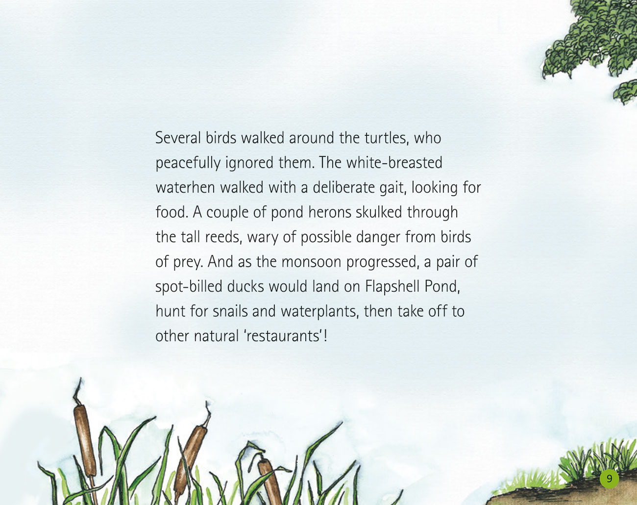Bedtime story Wildlife in a City Pond page 11