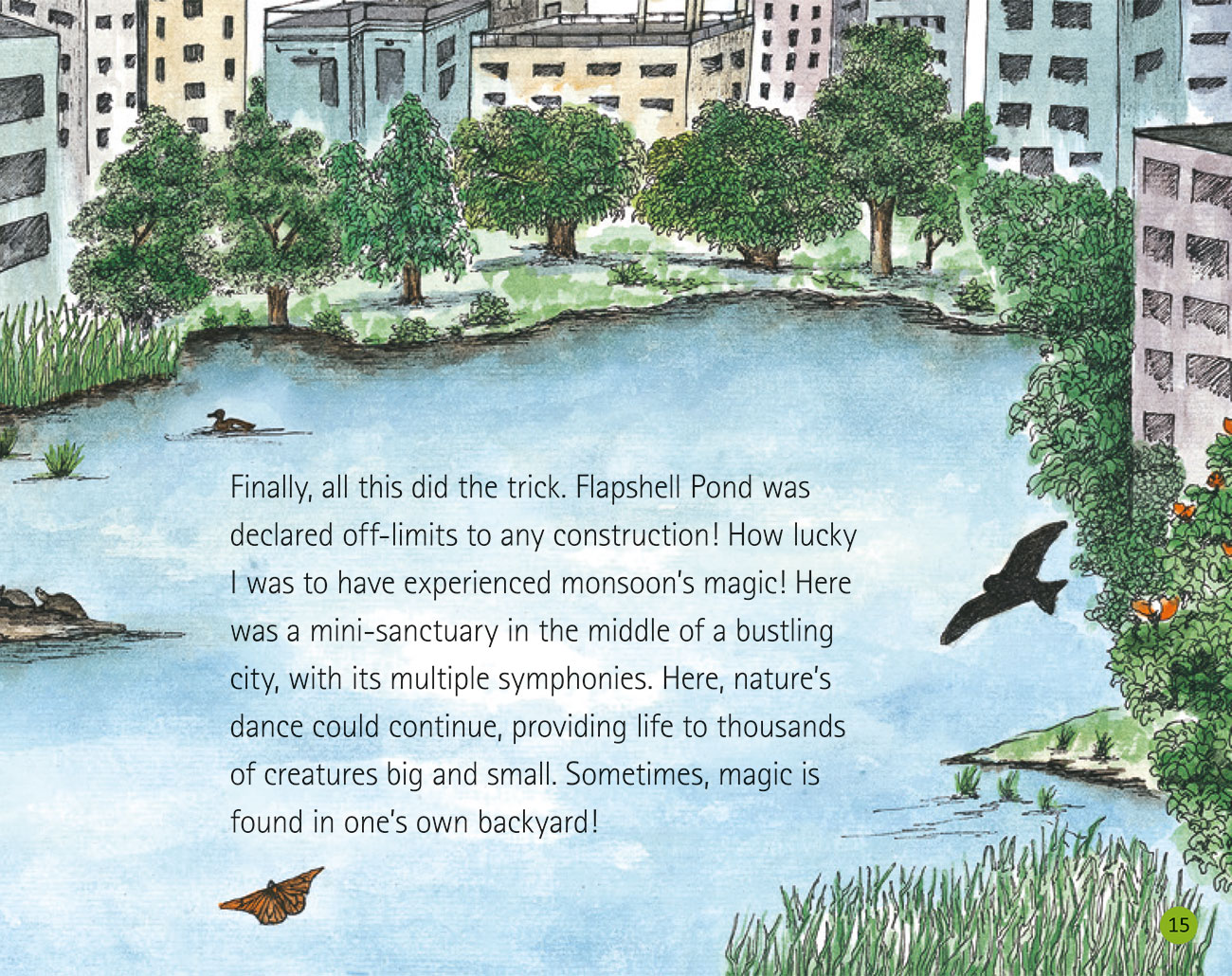 Bedtime story Wildlife in a City Pond page 17
