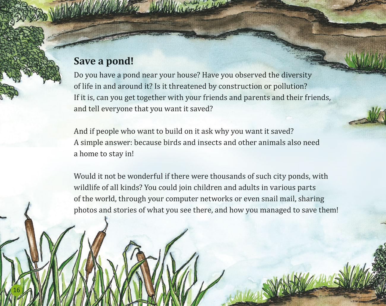 Bedtime story Wildlife in a City Pond page 18