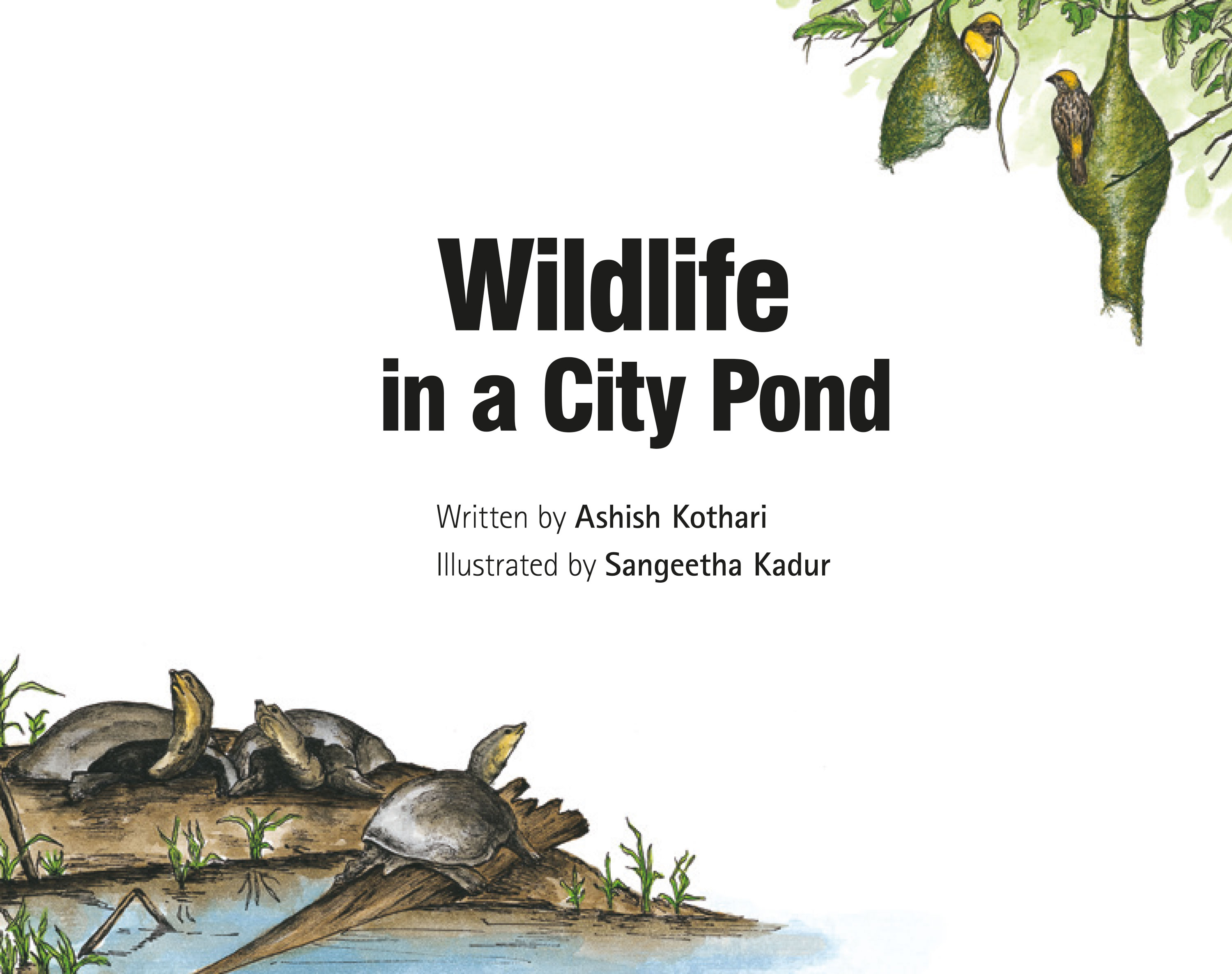 Bedtime story Wildlife in a City Pond page 2