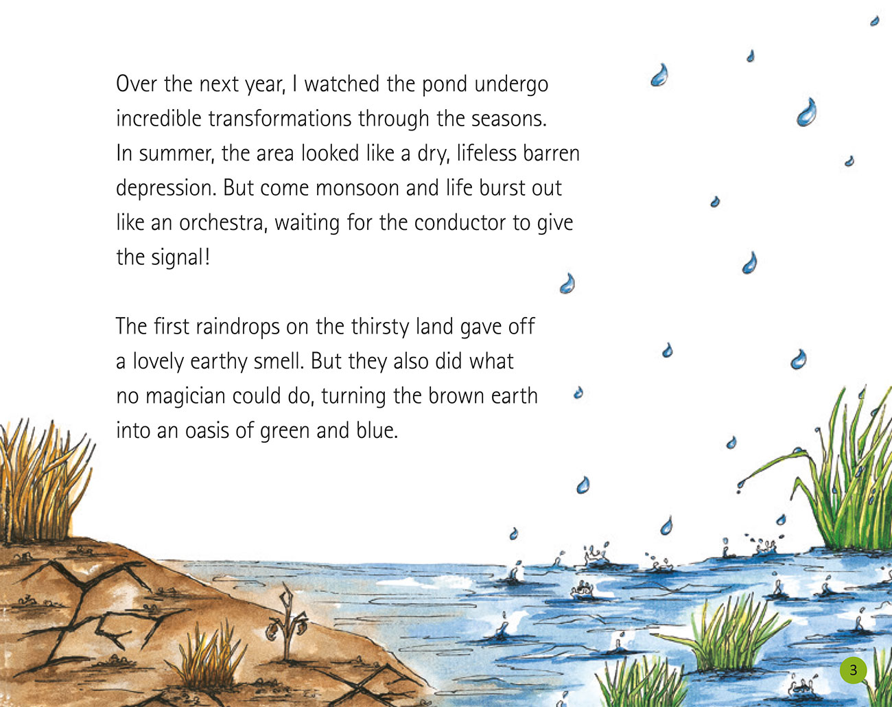 Bedtime story Wildlife in a City Pond page 5