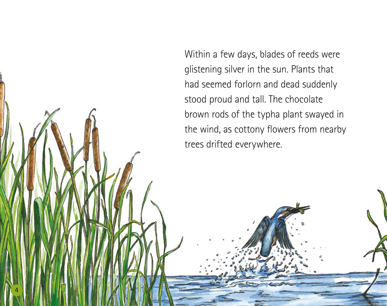 Bedtime story Wildlife in a City Pond page 6