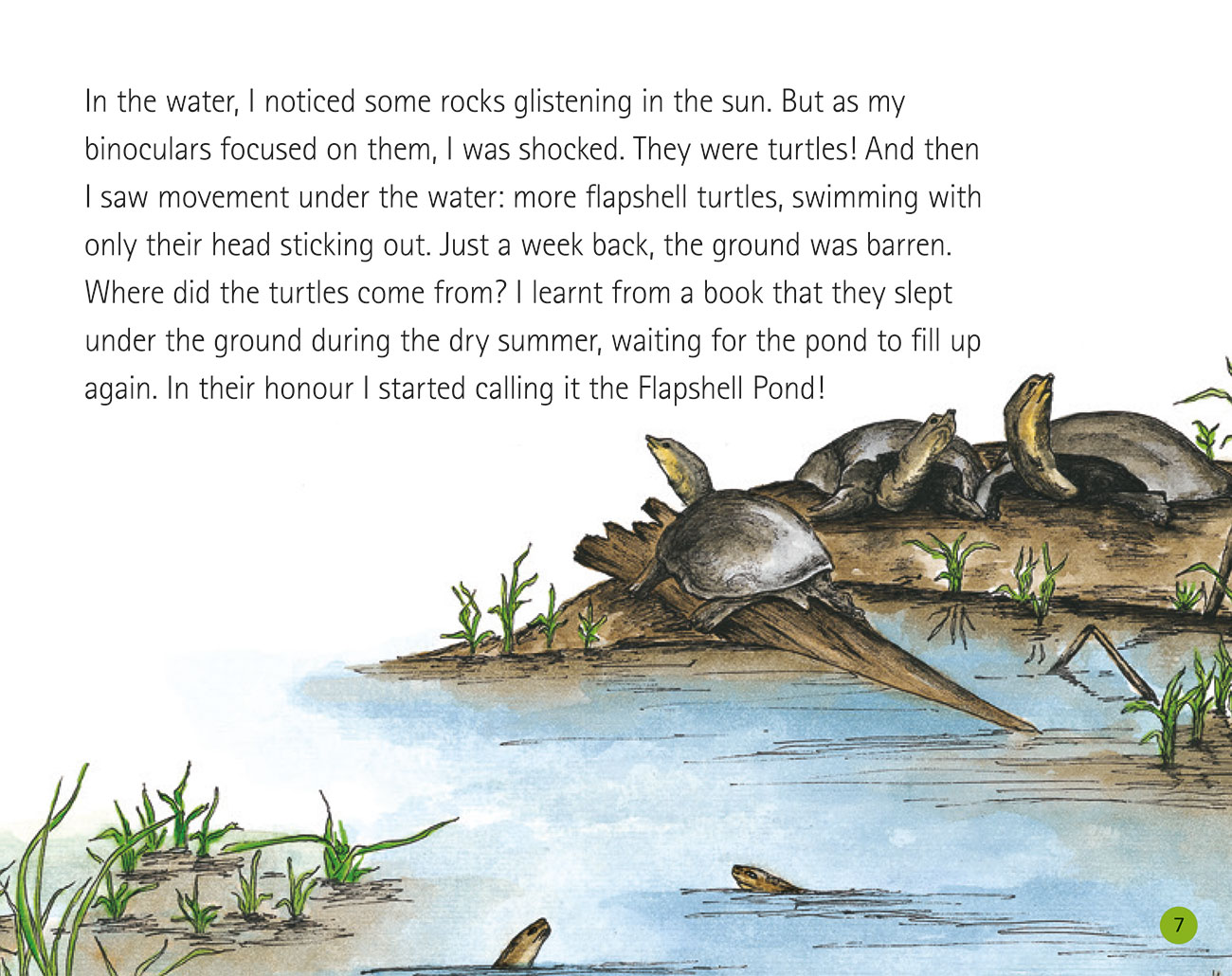 Bedtime story Wildlife in a City Pond page 9