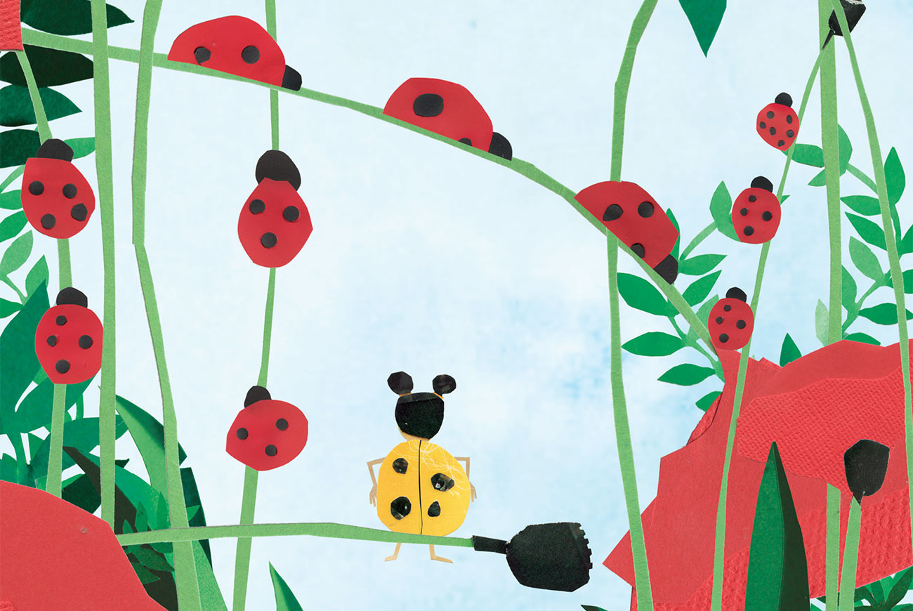 Children's book Lara the Yellow Ladybird cover