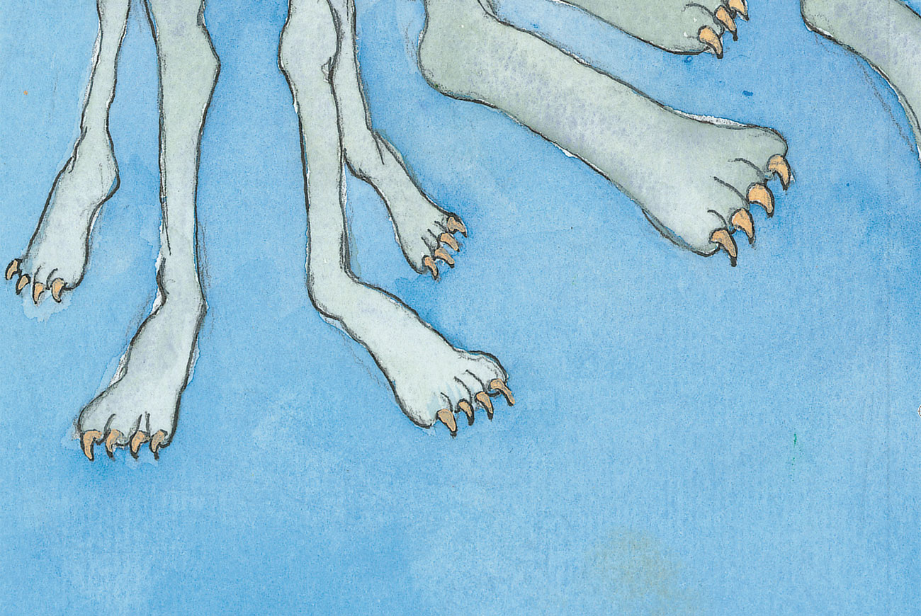 Cover illustration of feet- Picture books and bedtimes stories for babies - 'what is it'