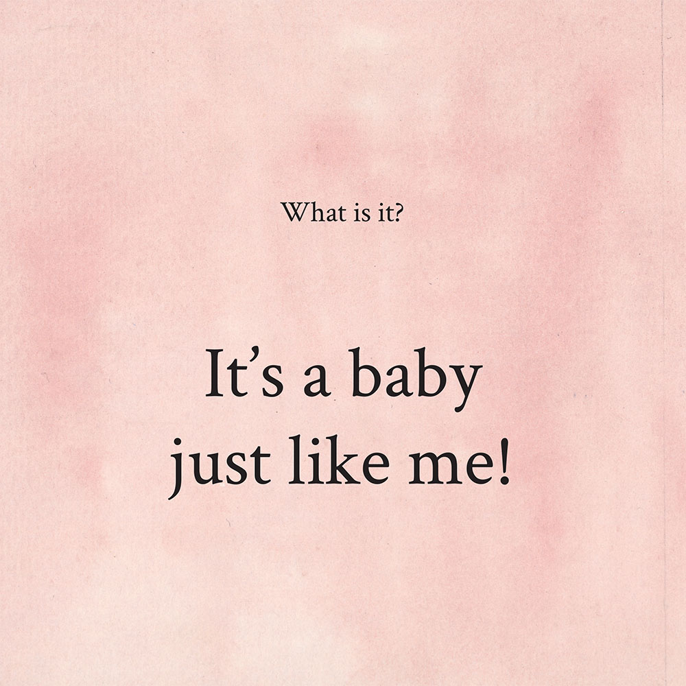 Picture books and bedtimes stories for babies 'what is it' page 21