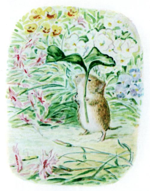 Bedtime stories Beatrix Potter Johnny Townmouse page 14