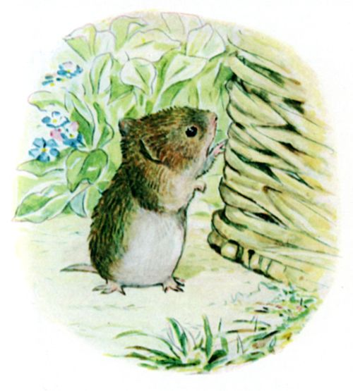 Bedtime stories Beatrix Potter Johnny Townmouse page 18