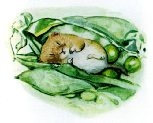Bedtime stories Beatrix Potter Johnny Townmouse page 2