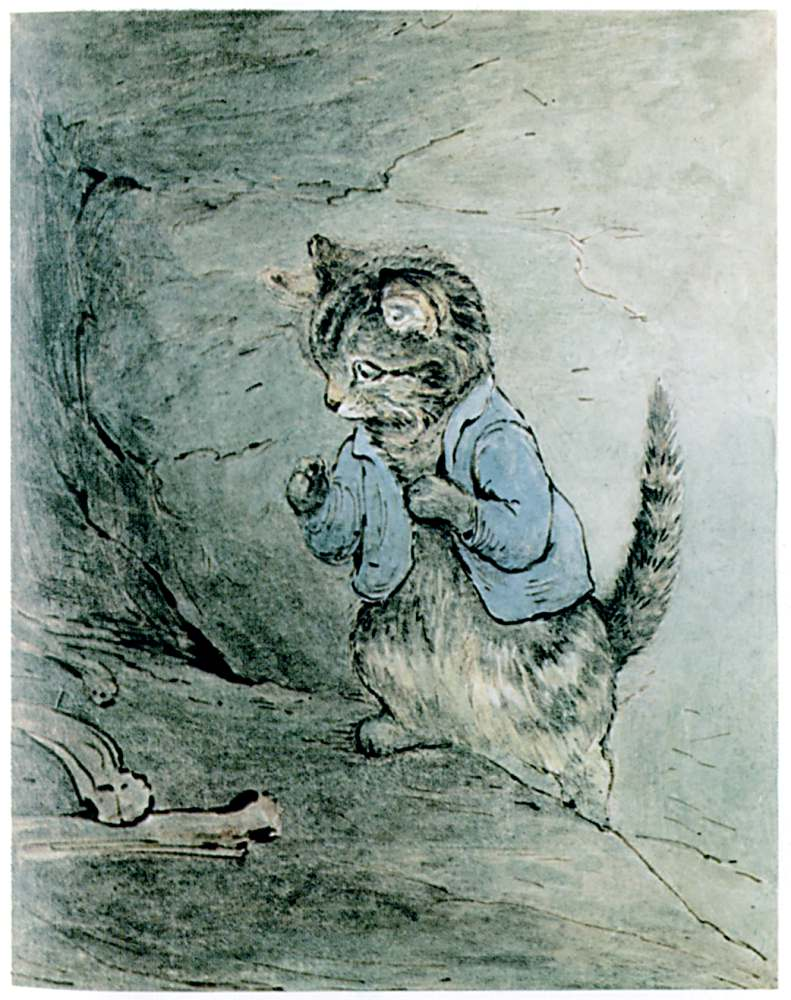 Bedtime stories Samuel Whiskers by Beatrix Potter page 25