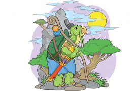Chinese childrens story illustration for fairytale Bamboo and the Turtle