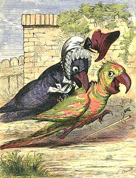 The Faithless Parrot Vintage Childrens Story - Page 7
