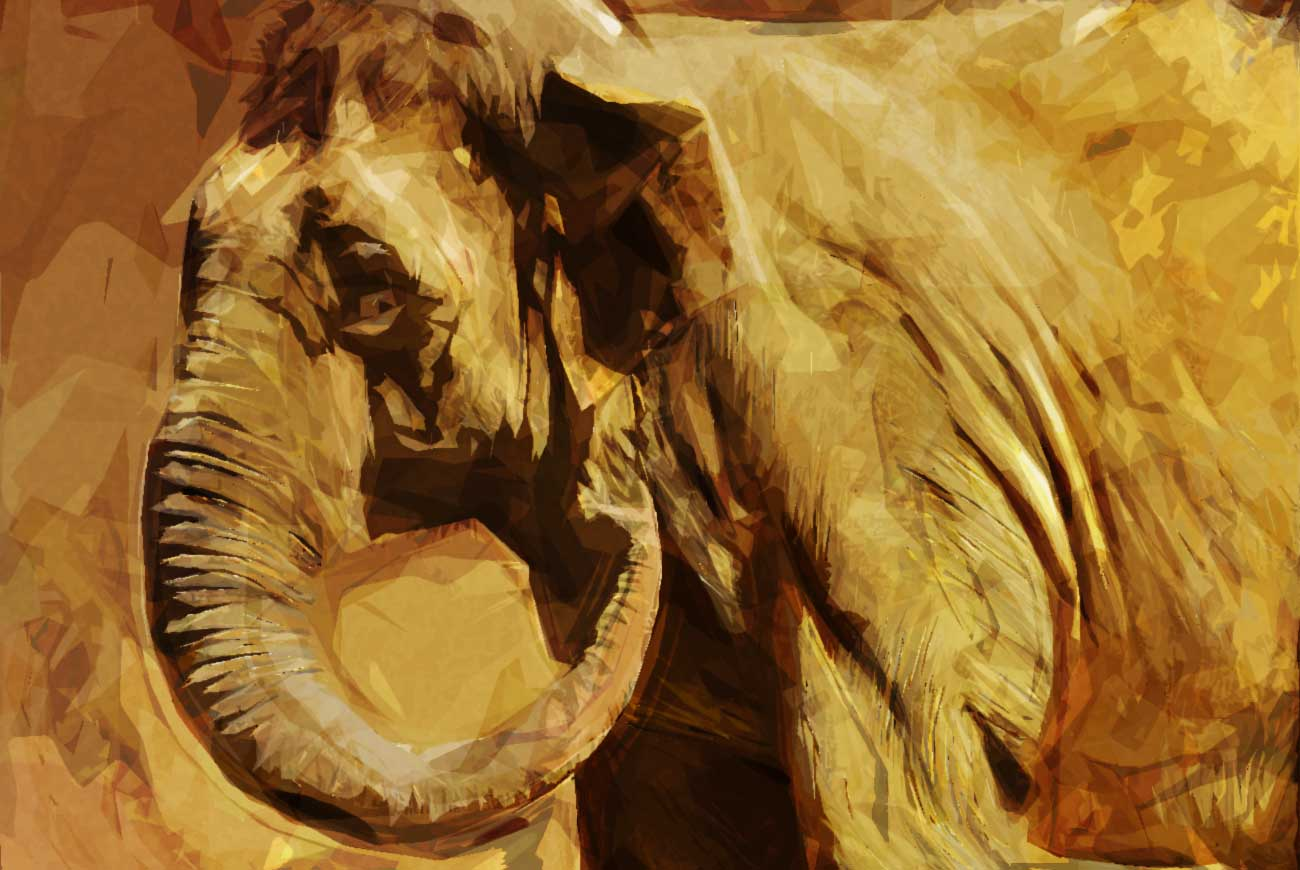 Poems for kids E is for elephant illustration