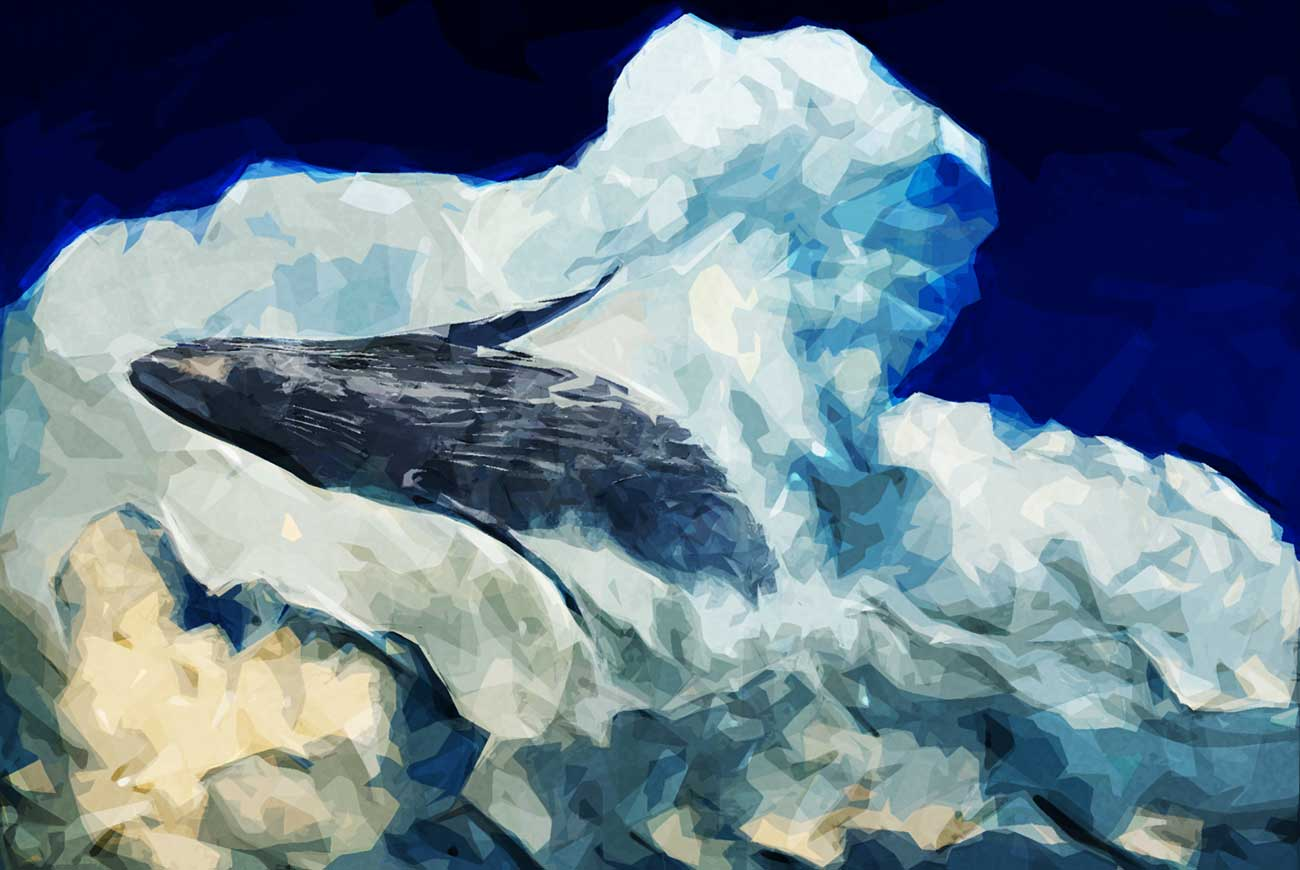 Poems for kids W is for whale illustration
