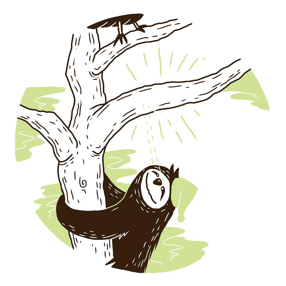 Sleepy Mr Sloth short stories for kids 19