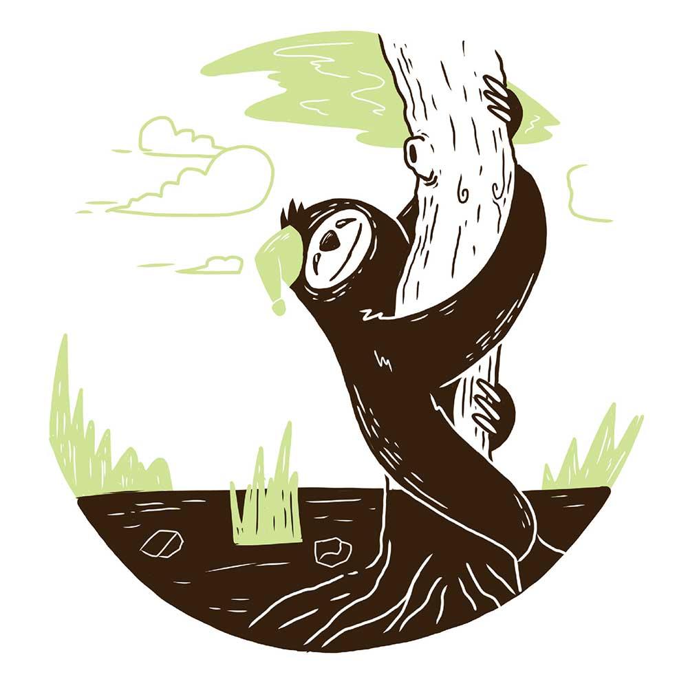 Sleepy Mr Sloth short stories for kids 5