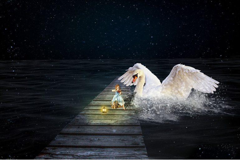 Illustration for Hans Christian Andersen fairytale Twelve Swans