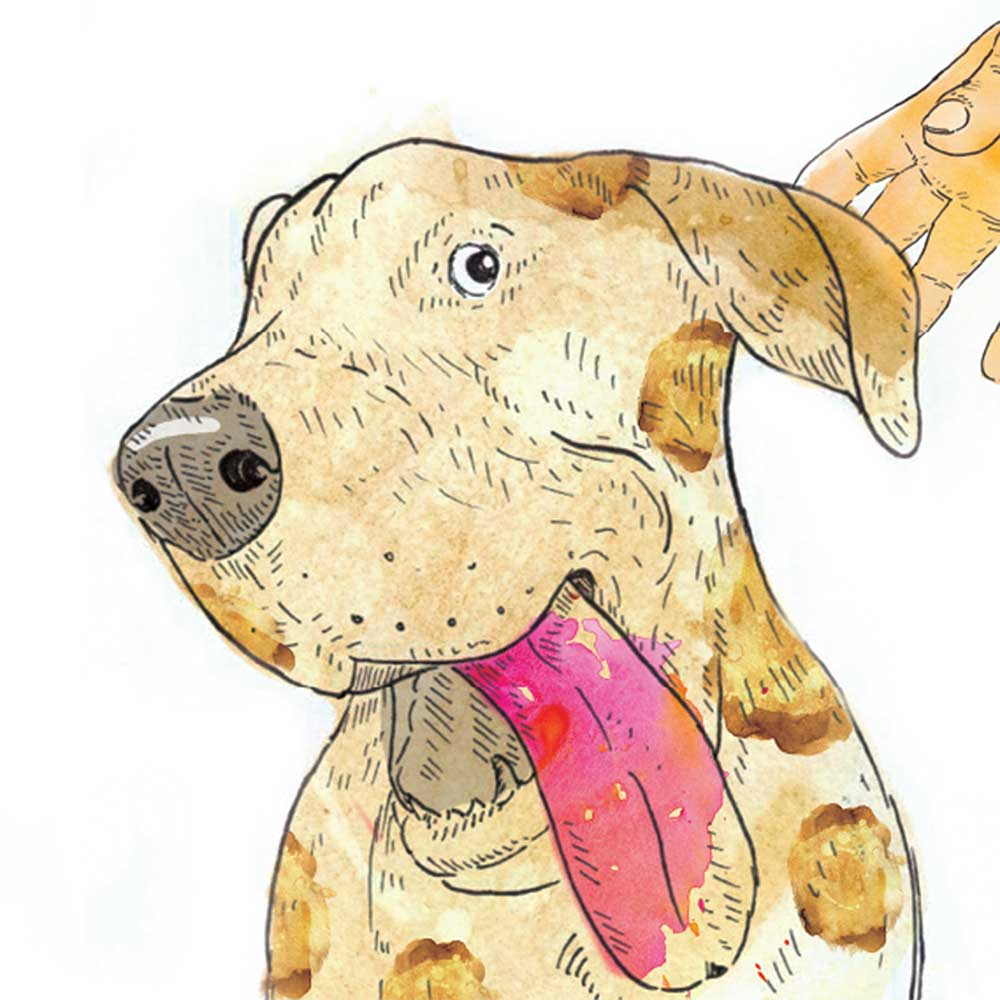 Short story for kids The Bounce dog tale page 11