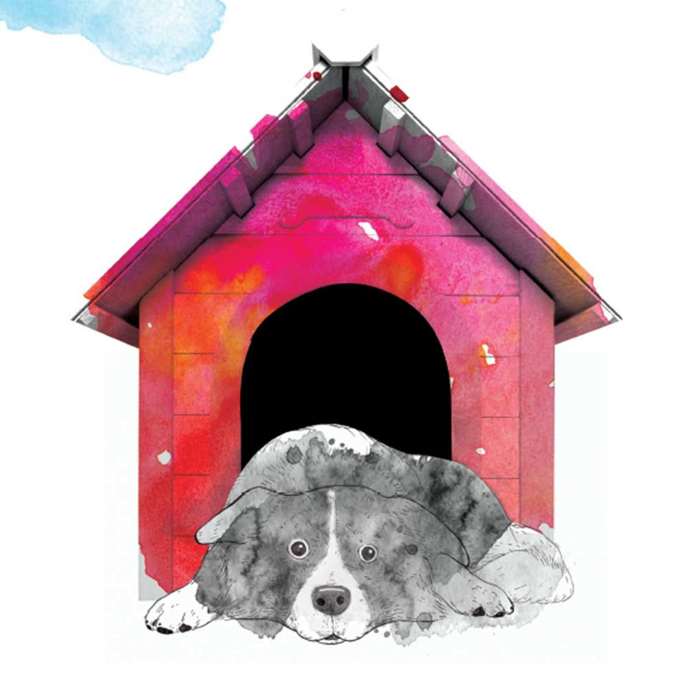 Short story for kids The Bounce dog tale page 6