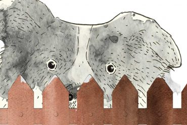 Short story for kids The Bounce dog tale header