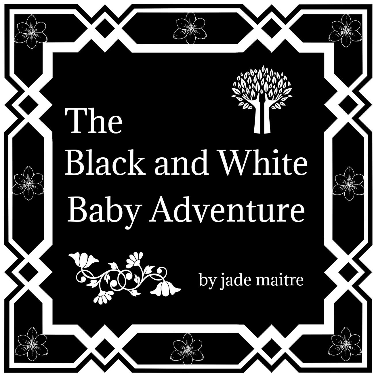 The Black and White Baby Book - Adventure cover