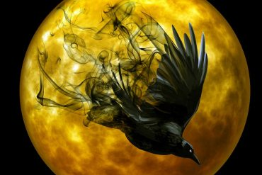 The Raven Grimm fairy tales illustration