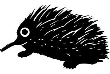 Poems for kids Porcupine Picnics by Arden Davidson