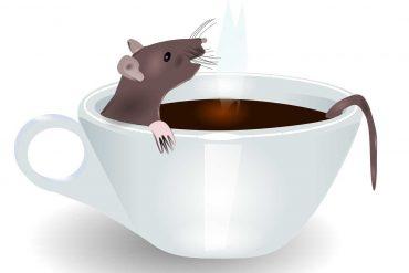 Poems for Kids A Better Mousetrap illustration