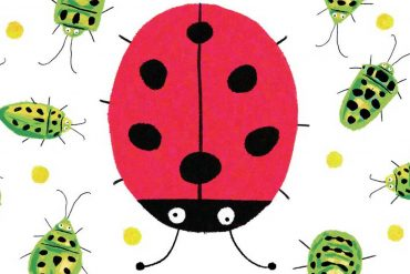 Bedtime stories Incredible Insects A Counting Book stories for kids header