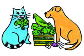 bedtime stories Jimmy the cat and gardening free kids books online header